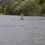 Fishing at Ballyduff House 4